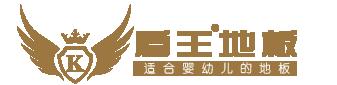 盾王地板logo
